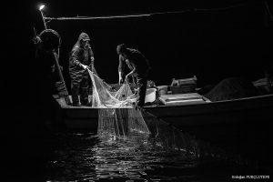 2020-2021 Balıkçılık Sezonu 1 Eylül İtibari ile Başladı