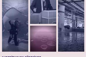 """Akreditasyon Sürecinde Su Ürünleri Mühendisliği Eğitimi"""" konulu Webinar yapıldı"""